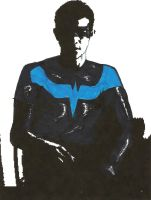 Nightwing by NuvaPrime