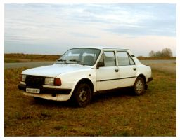 Skoda car by What-is-worth