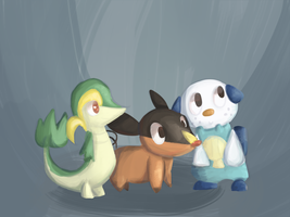 5th Gen Starters by Kiytt