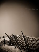 The fence by shhilja