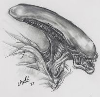 Xenomorph by Doctor-Axel