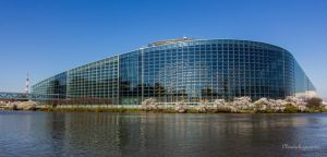 European Parliament with Cherry Blossoms by Cloudwhisperer67