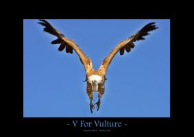 V For Vulture by UnUnPentium115