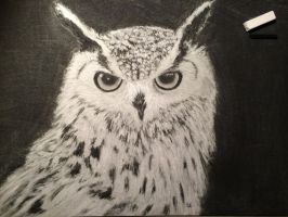 White Wise Owl by DontDoItWithoutLove