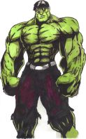 The Incredible hulk (colored) by ctgarrett92