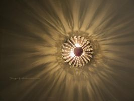 Rays of Light by ShipperTrish