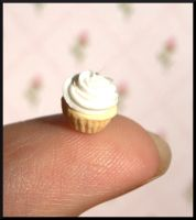 Tiny Cupcake by MiniatureChef