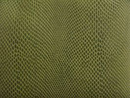 Texture-Snake Skin by liz-stock