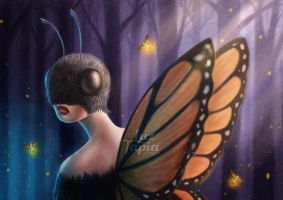 Butterfly (VIDEO PROCESS) by LuzTapia