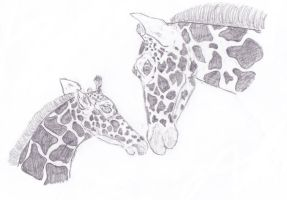 Giraffe Mother and Child by caitiedidd
