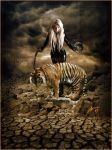 Tigers Fall From Grace by fotophi