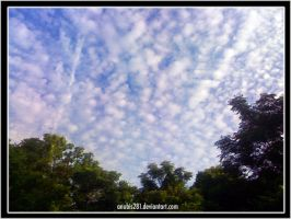 Patchwork Sky 070509 by anubis281