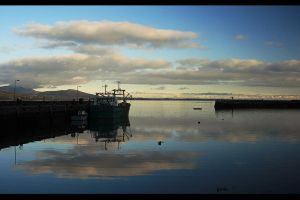 3657 Carlingford M by mbo70