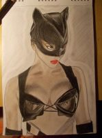 Halle Berry as Catwoman by Sheiwa
