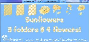 Sunflower Folders And Flowers by TNBrat