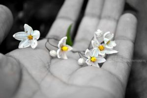 Tiny Flowers by CiaraSshowdownn