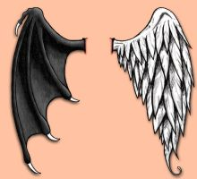 Good and Evil Wings by CHeliz85