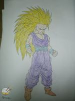 Dragon ball - Gohan 19 (SSJ3) by songohanart