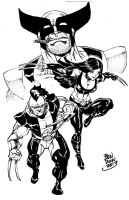 Wolverinefamily by Dogsupreme