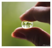 the world in your hand by pwojciuk