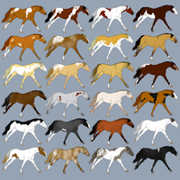 March Horse Designs by Roma-Roses-Ranch