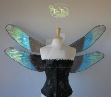 Painted Dragonfly Iridescent Fairy Wings front by FaeryAzarelle