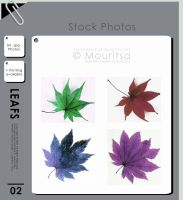 Photo Pack - Colorful Leafs by MouritsaDA-Stock