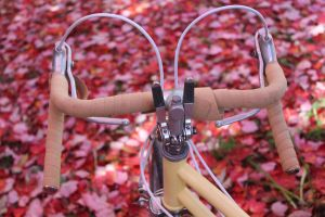 bicycle by taevans