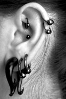 Ear Piercing I by jc-arwin
