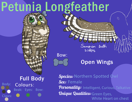 AOOM - Petunia the Spotted Owl reference by MrOtterson