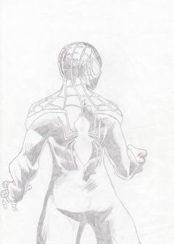 Spider-Man - Miles Morales by Roach97