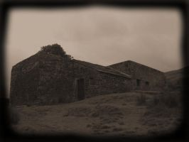 Wuthering Heights by Flavius2204