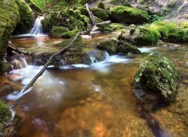 Paehler Gorge by quintz