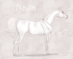 Najm - LEASED by Meykka
