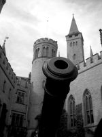 Old Cannon by Infest90