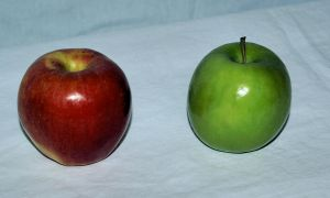 Food _ 2 apples 2 colors by Aimelle-Stock