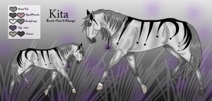.:Kita:. by Black-Heart-Always