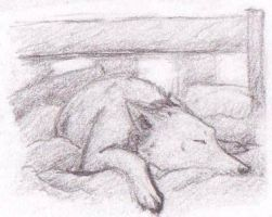 Tame the Wolf in my Bed by Rozlin