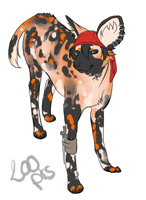 Adoptable Wild Dog pirate - CLOSED by SorahChan