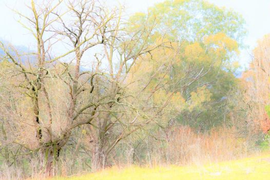 Faded dreams by Daggles67