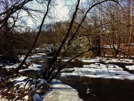 Patapsco River Winter Scene by Matthew-Beziat