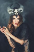 Maleficent by NatashaSmithPhoto