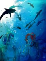 Free! - Shark Diving in australia by Bisho-s