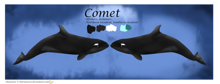 Comet reference sheet by NarniaOrca