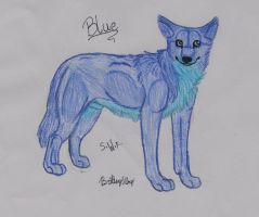 Blue, The Texas red(Blue) Wolf Commission by skywolffang