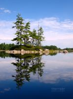 Symmetry + Asymmetry by HerrHaller