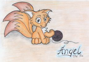 Angel the fox by Neo-The-Fox
