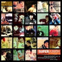 Super Junior Icons Batch by Elmas