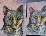 ACEO: Kitty by UpalaFire