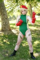 Cammy Cosplay by feyfey